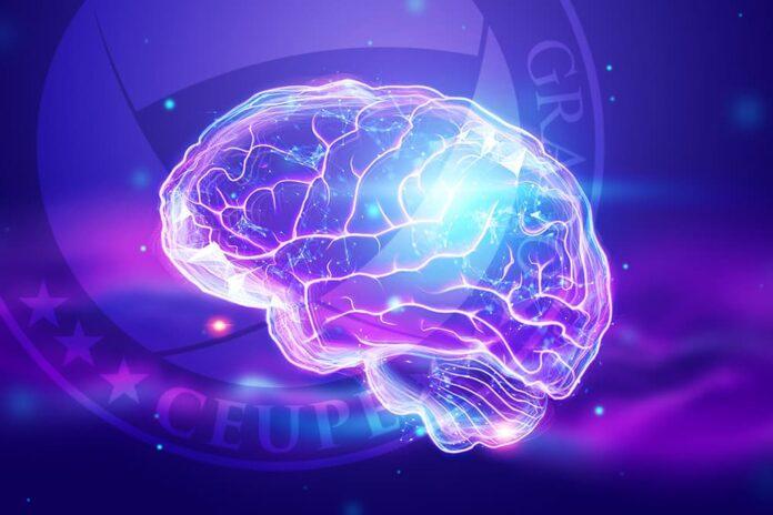 Neuropsicología Educativa